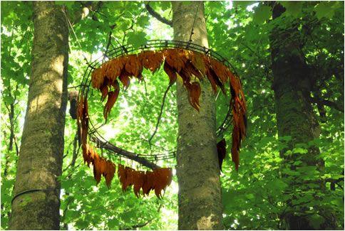 forestofdean